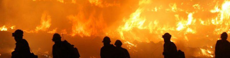 Asociaciones a las que puedes donar para ayudar a California - distintas-asociaciones-a-las-que-puedes-donar-para-ayudar-a-california-google-wildfire-amazon-califronia-washington-ayuda-organizaciones-help-global-warming-google-3
