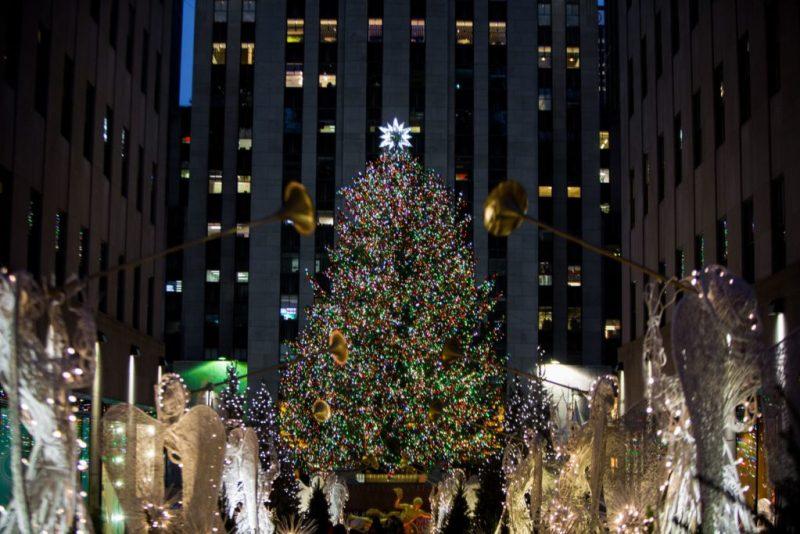 Descubre los árboles de navidad más impresionantes del mundo de años anteriores - descubre-los-arboles-de-navidad-mas-impresionantes-del-mundo-de-ancc83os-anteriores-christmas-tree-christmas-decor-christmas-navidad-decoraciones-de-navidad-arbol-de-navidad-ideas-4