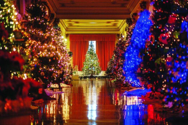 Descubre los árboles de navidad más impresionantes del mundo de años anteriores - descubre-los-arboles-de-navidad-mas-impresionantes-del-mundo-de-ancc83os-anteriores-christmas-tree-christmas-decor-christmas-navidad-decoraciones-de-navidad-arbol-de-navidad-ideas-8