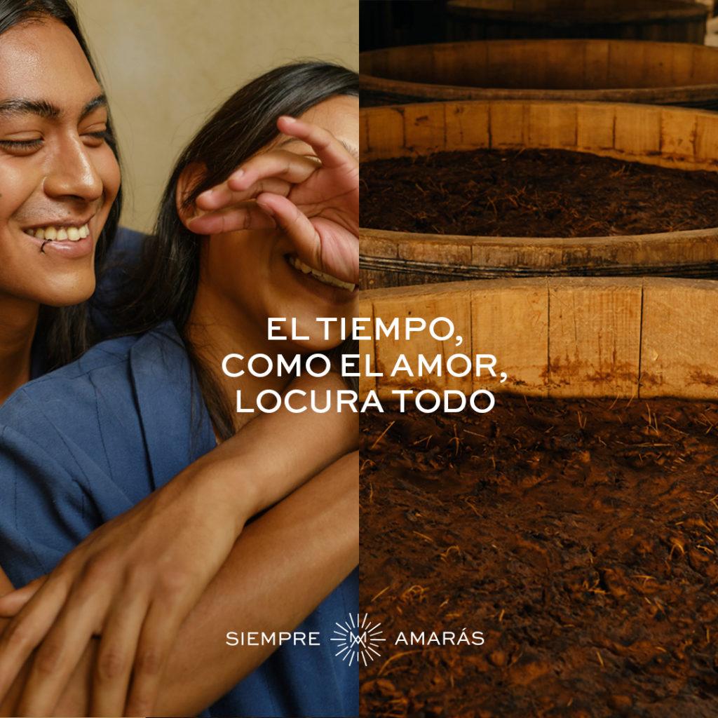 De Oaxaca para el mundo, Mezcal Amores: una historia que siempre amarás - de-oaxaca-para-el-mundo_-una-historia-que-siempre-amaras-compartida-por-mezcal-amores-america-shailene-woodley-3