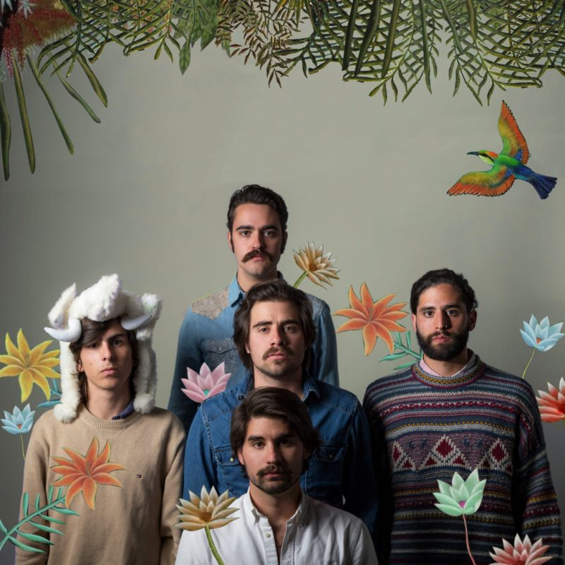 Primo Son, la banda mexicana que llegó para quedarse - primo-selva-2