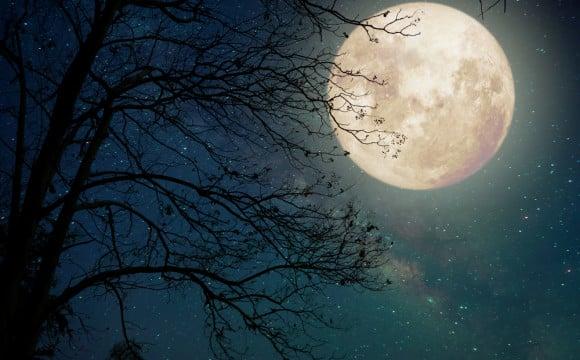 8 datos curiosos sobre Halloween - 8-datos-curiosos-sobre-halloween-3