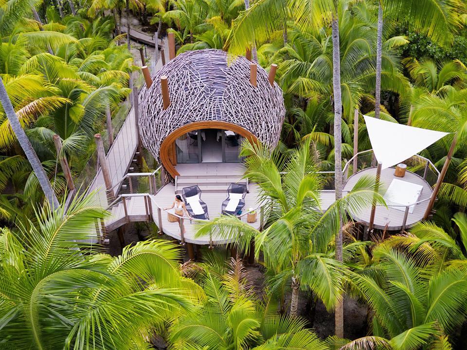 Hoteles ecológicos en el mundo que debes conocer