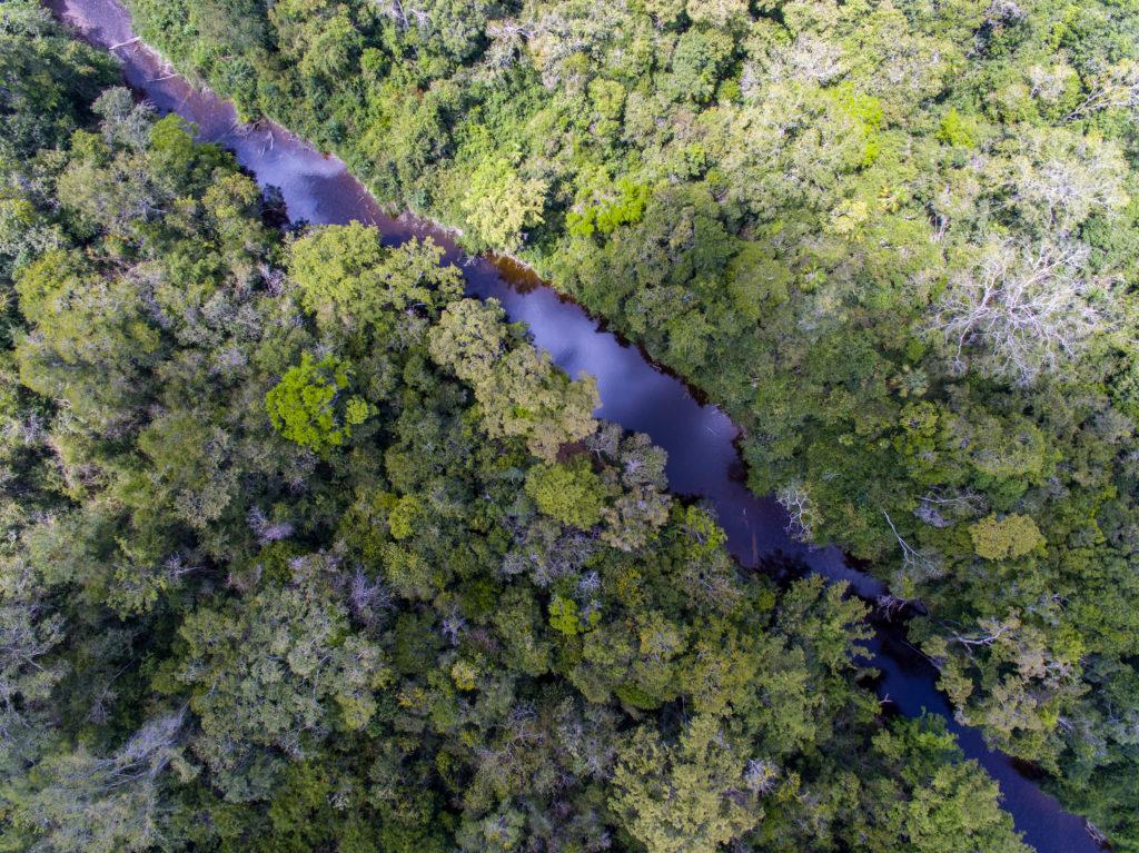 Airbnb y Rutopía: experiencias de turismo biosustentable