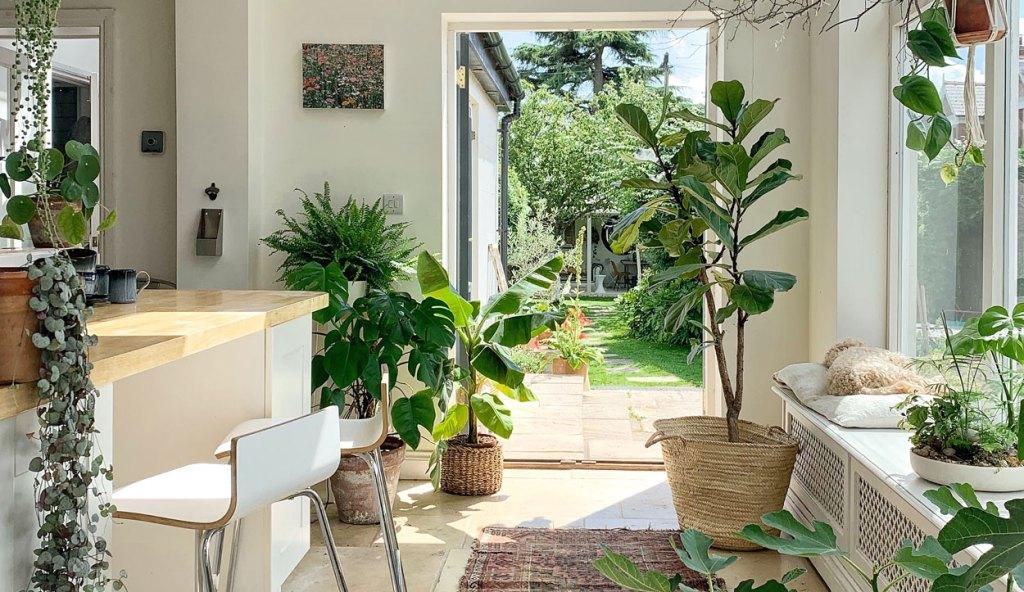 Tips de interiorismo para integrar plantas en tu hogar