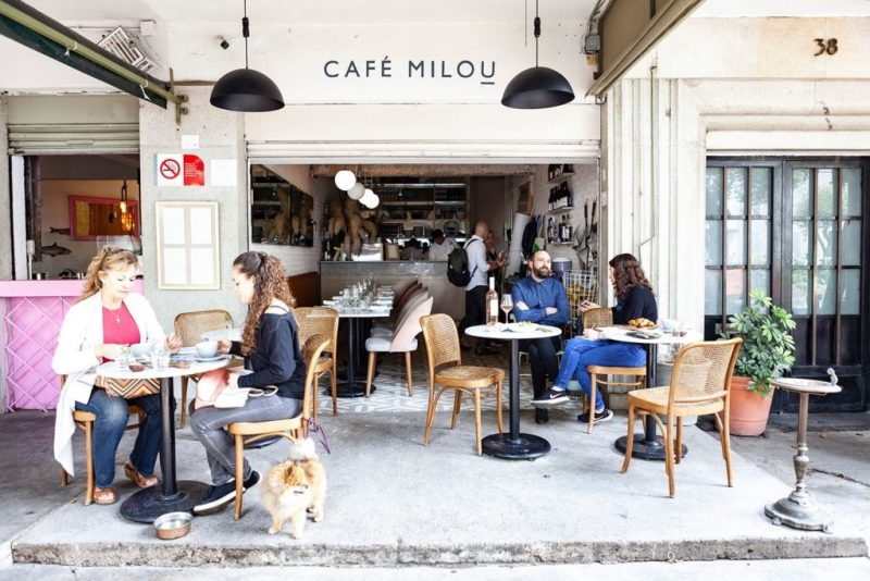 Coffee: hug in a mug. Las mejores cafeterías de la CDMX - cafe-milou-coffee-hug-in-a-mug-las-mejores-cafterias-de-la-cdmx