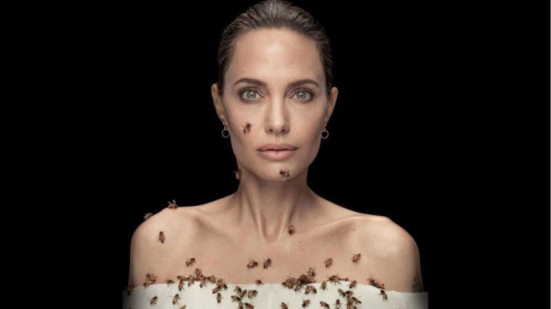 ¡Feliz cumpleaños Angelina Jolie! Fun facts de la diva más famosa de Hollywood - foto-13-feliz-cumpleanos-angelina-jolie-fun-facts-de-la-diva-mas-famosa-de-hollywood