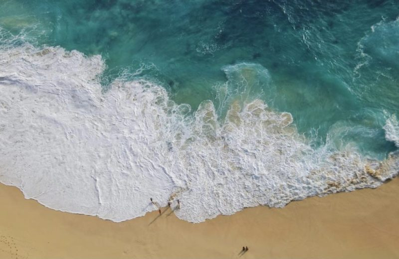 Impactantes fotografías de la vida marina, un mundo bajo el agua repleto de magia - foto-7-dia-del-oceano-dia-del-oceano-mar-playa