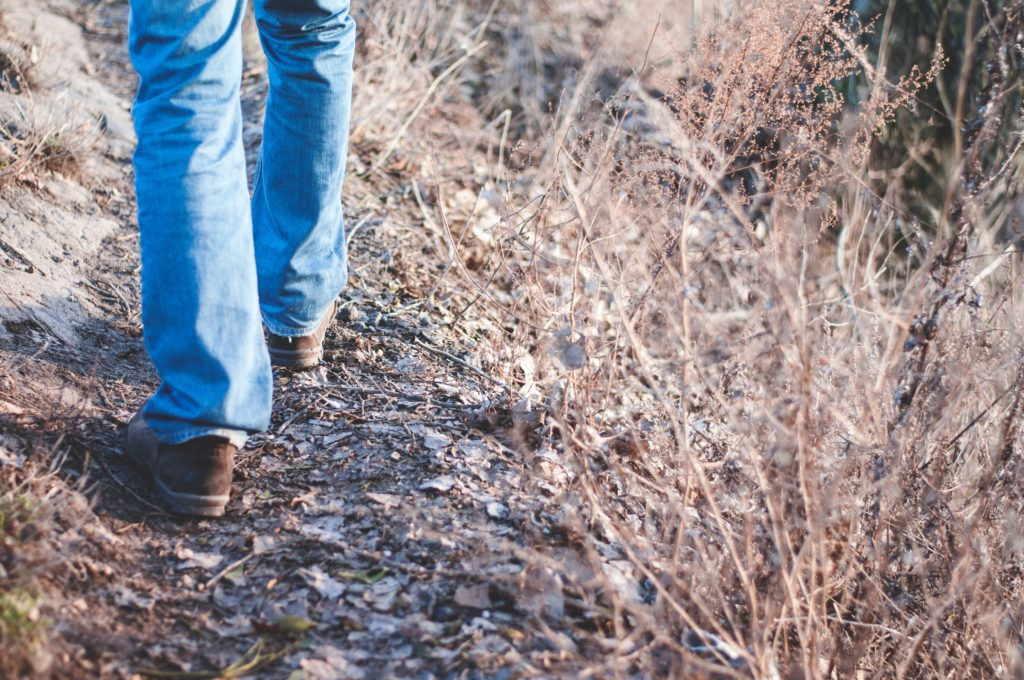 Por qué caminar es uno de los mejores entrenamientos cardiovasculares