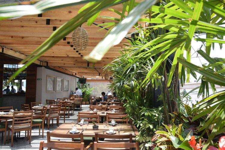 Los mejores rooftop bars para pasar el 15 de septiembre en la CDMX - palmares-azotea-los-mejores-rooftops-para-pasar-el-15-de-septiembre-en-la-cdmx