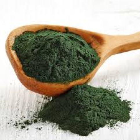 7 superfoods para fortalecer tu sistema inmunológico - alga-espirulina-7-super-foods-para-elevar-tu-sistema-inmunologico