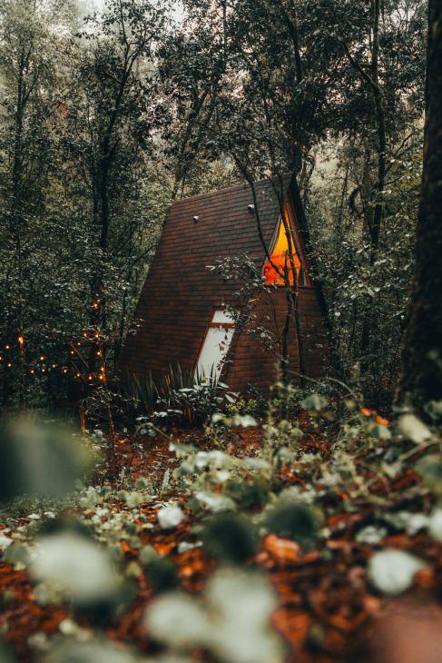 Wander Cabins, una experiencia remota en la naturaleza - foto-2-wander-cabins-una-expereincia-remota-en-la-naturaleza