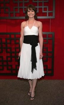 Jennifer Morrison Celebrity