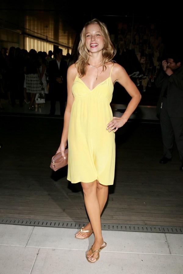 Actress Rachel Nichols Dress