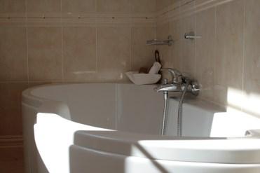 Master Suite: Bath