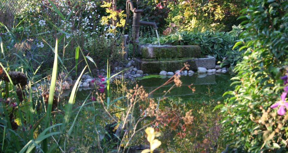 bassin-fontaine-hotel-au-relais-de-lill