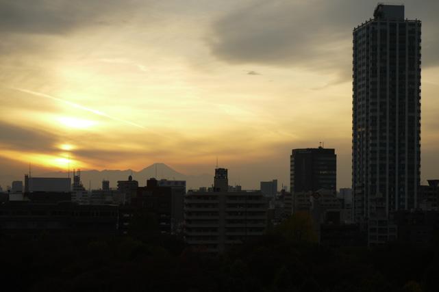 ハイアットリージェンシー東京_眺望