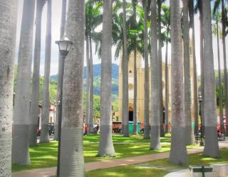 Parque_Cinera_en_Salazar_de_las_Palmas