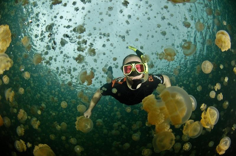 imagem-de-mergulhador-no-mar