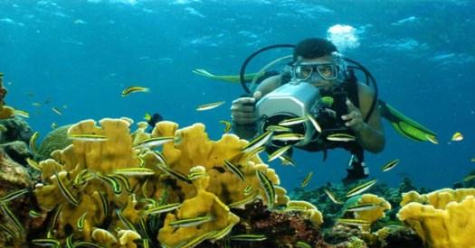 Lugares Turisticos de Honduras Roatan