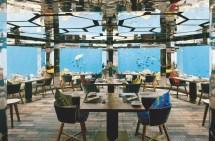 Aquarium Ant Aux Maldives Voyages Hotels De Luxe