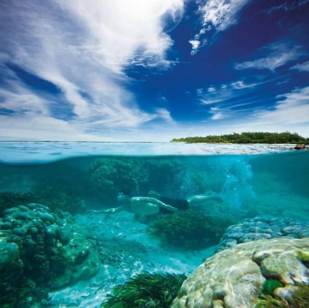 alphonse-experiences-snorkeling-6-copie