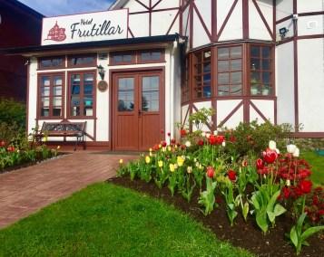 Tulipanes - Hotel Frutillar