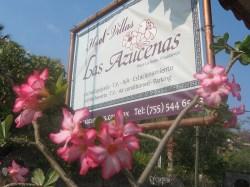 hotel ixtapa zihuatanejo (13)