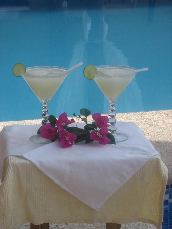 hotel ixtapa zihuatanejo (22)