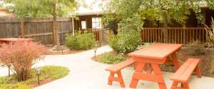 back patio - picnic benches