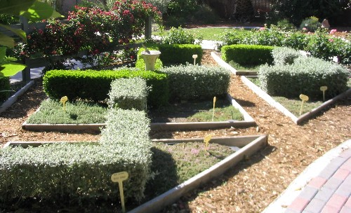 Knot garden with herbs