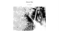 The start of the 'about me' section