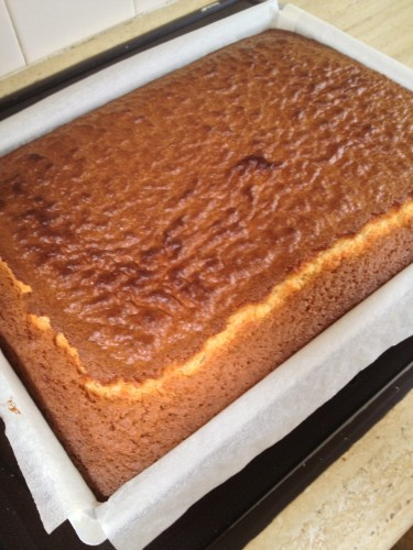 The baked slab cake