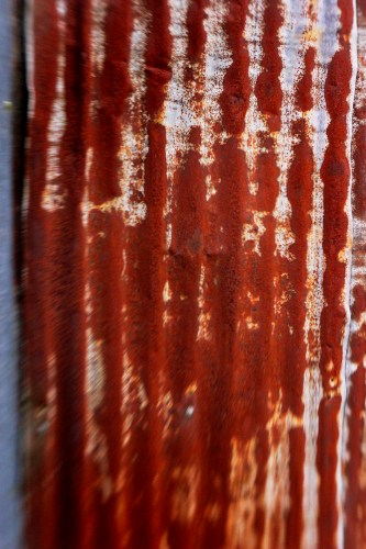 Corrugated iron - so many farms were built using this material