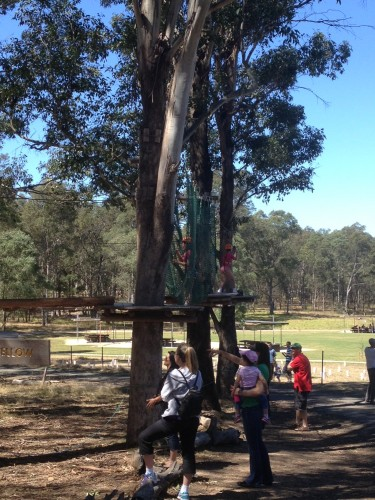 The children's climbing course at Tree Top Adventure Park