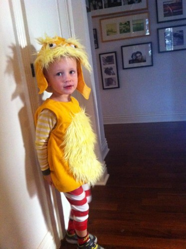 My nephew who lives in LA.  He's only three and dress as The Lorax