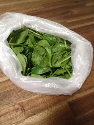 I gave the spinach to Mr Competitive in this bag as I didn't want to put it into the curry and then have it re-heated - not good!  Much better if it's added at the last minute.