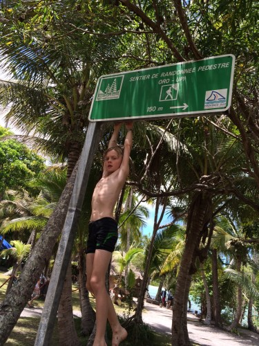 Just hanging off the sign pointing us in the direction of Oro Bay.