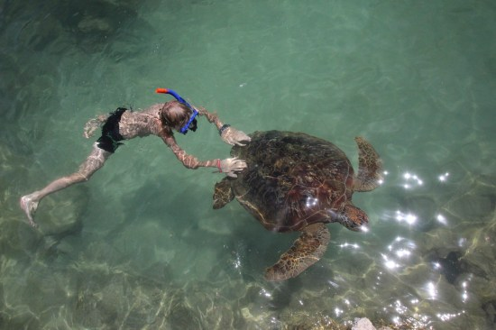 Alfie riding a turtle