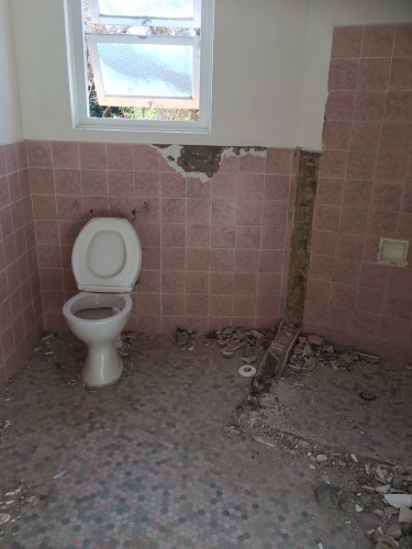 Bathroom - waiting, waiting, waiting to be stripped out