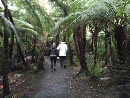 Piha Beach New Zealand Hike