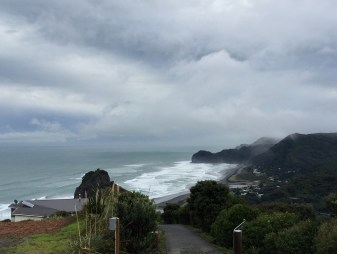 Piha Waterfall Hike Auckland New Zealand