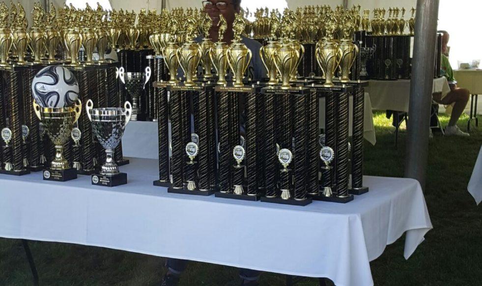 trophys for sunshine blogger