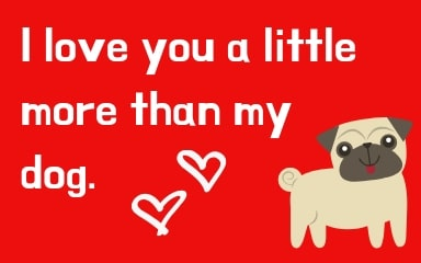 I love you a little more than my dog.