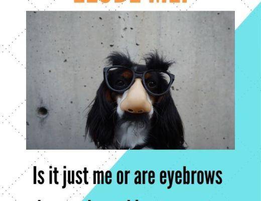 eyebrows elude me