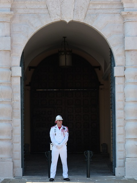 Free Photo: Palace Guard, Guard, Man, Person - Free Image on Pixabay - 187384