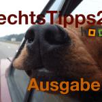 Hund gilt als Ladung? – StVO, § 23 – RechtsTipps24.tv