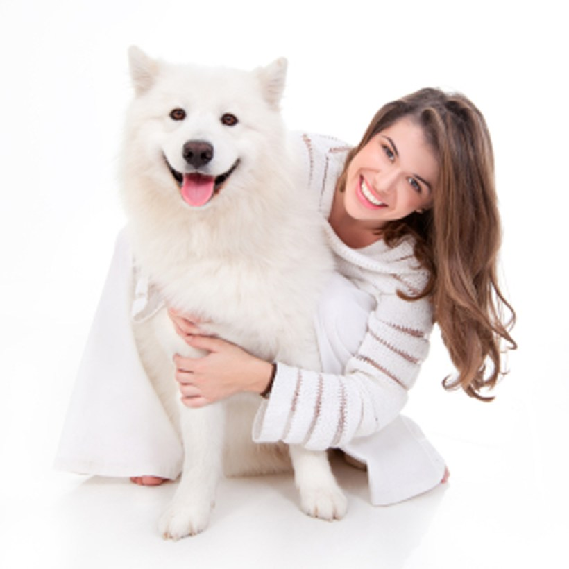 Importance of Grooming Your Dog