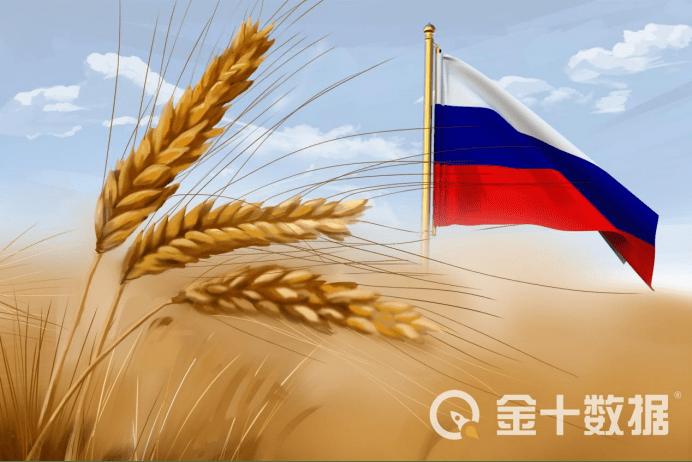 最新!俄罗斯禁止出口荞麦禁令正式生效,中国是其最大买家