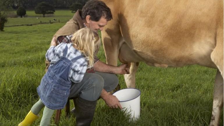 """中国""""开放三胎""""消息出来后,澳大利亚:乳制品出口需求将增加"""